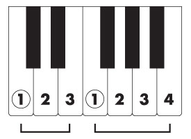 Article-5-img-keyboard1