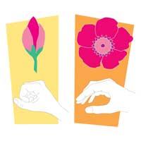 Blooming-Flowers